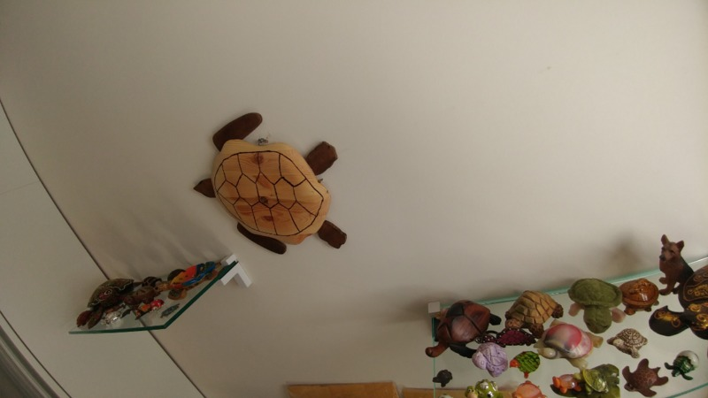wooden-sea-turtle