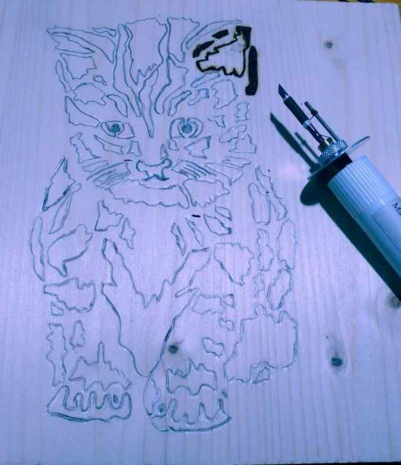 gattino-pirografato
